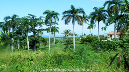 thumbnail for SOSUA: LOT PALM GARDEN 1 590 M2