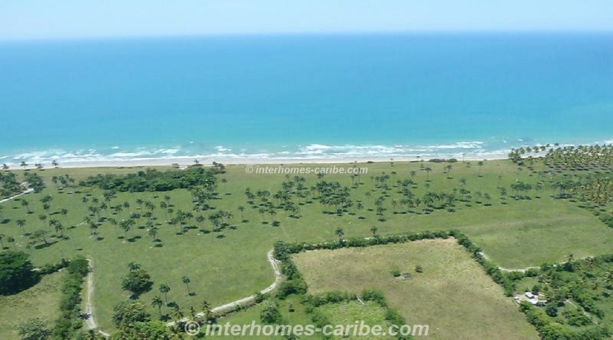 thumbnail for LAS CANAS: LOT WITH 388 m SEAFRONT